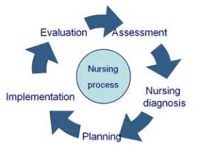 Essay on professionalism in nursing clinical experience